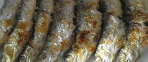 espeto_sardinas_chiringuito_rincon_de_la_victoria