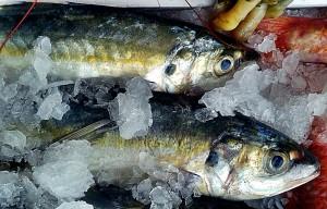 pescado_fresco_chiringuito_malaga