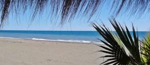 playa_chiringuito_malaga